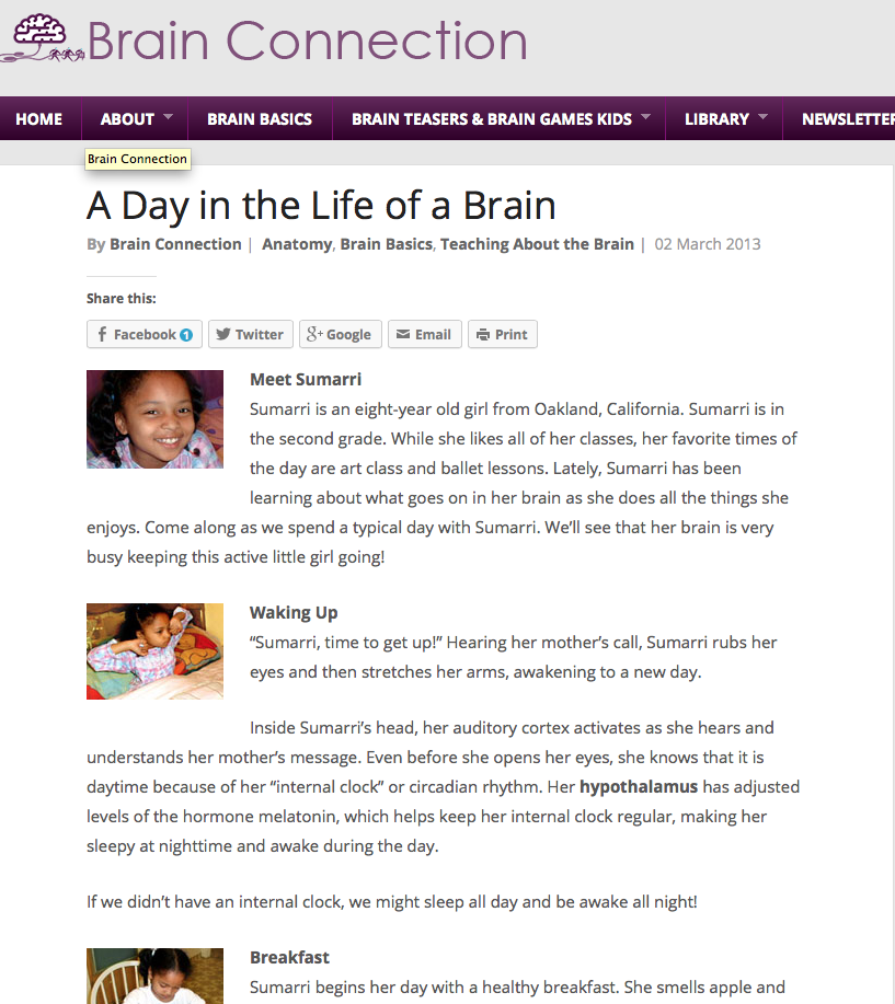 A Day In the Life of a Brain